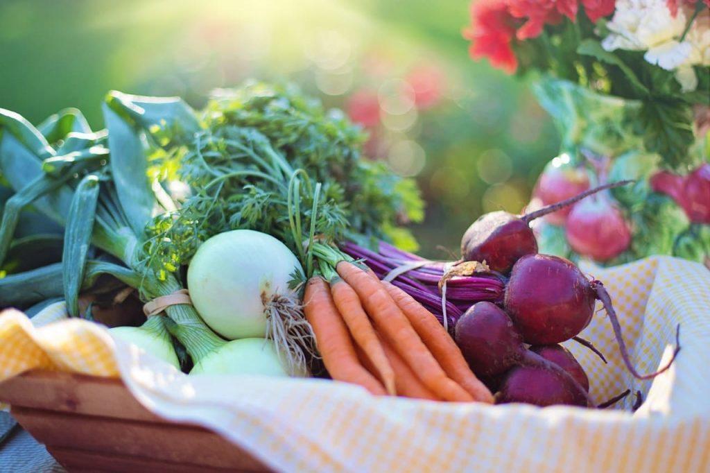 Courtesy of Pexels: https://www.pexels.com/photo/agriculture-basket-beets-bokeh-533360/